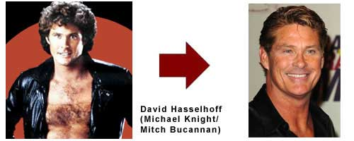 David Hasselhoff - Mitch Bucannan