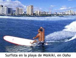 Oahu - Surf