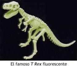 Dinosaurios - Maqueta del esqueleto de Tyrannosaurius Rex fluorescente