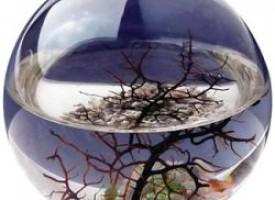 Ecosfera