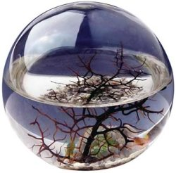 Ecosfera - Portada