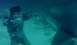 Nueva York bajo el terror de los zombies - Tiburón vs zombie