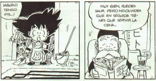 Dragon Fall - Sosón Goku y Chun Gohan