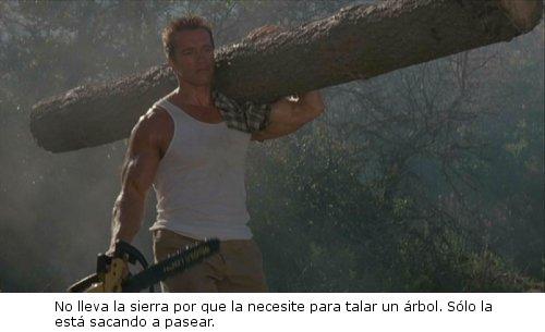 Commando - Arnie