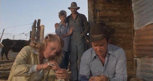 Tarántula (1977) - Diana, Shatner y los Colby