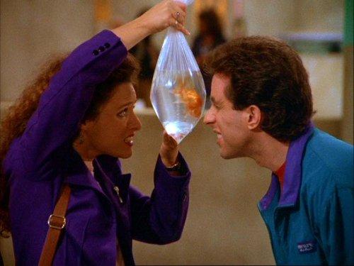 Peces de colores - Seinfeld